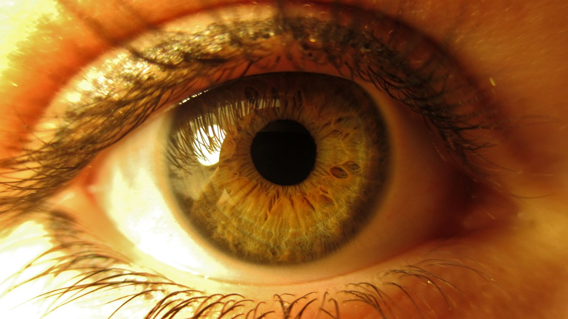 eye_1920x1080.jpg
